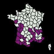 carte de répartition de Cacyreus marshalli (Butler, 1898)