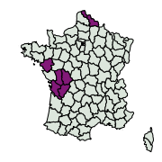 carte de répartition de Witlesia pallida (Curtis, 1827)