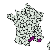 carte de répartition de Pyronia cecilia (Vallantin, 1894)