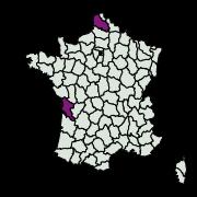 carte de répartition de Dichrorampha sp.