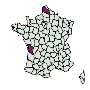 carte de répartition de Dichrorampha sp.