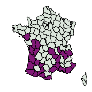 carte de répartition de Cacyreus marshalli (Butler, 1898)